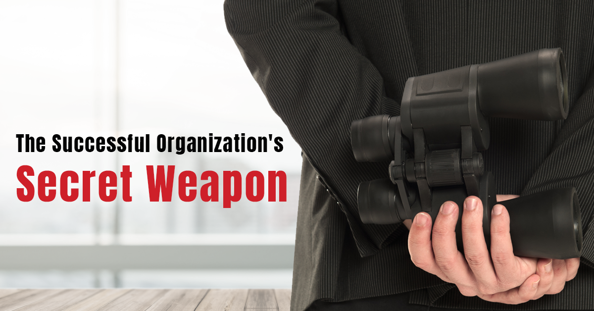 Insights: The Successful Organization's Secret Weapon